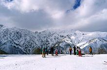 去白马庆祝新年,长野白马滑雪简单攻略#元旦去哪玩