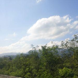 四野屯自然保护区旅游景点攻略图