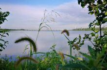 骑迹哈尔滨——长岭湖 长岭湖         是人工湖,位于黑龙江省南部哈尔滨市西郊,北依长岭岗,西