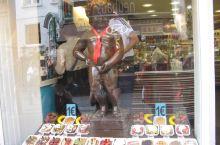 布鲁塞尔巧克力店