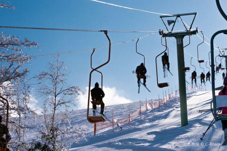 札幌國際滑雪場1
