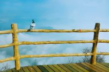 秋高气爽的五岳寨  忍不住的想拍下 鸳鸯石处看到的云海  好不容易到了主峰 此时只恨没有一个合适的镜