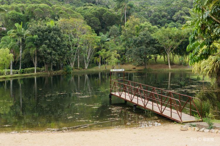 Rainforestation Nature Park3