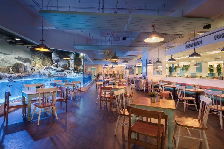 Jakarta Aquarium1