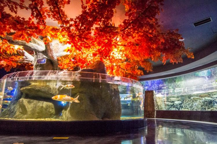 浩海立方海洋館3