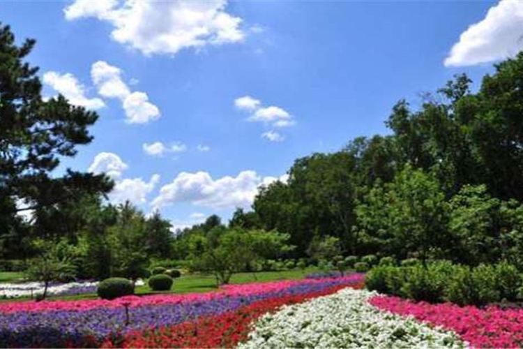 헤이룽장성 삼림식물원1