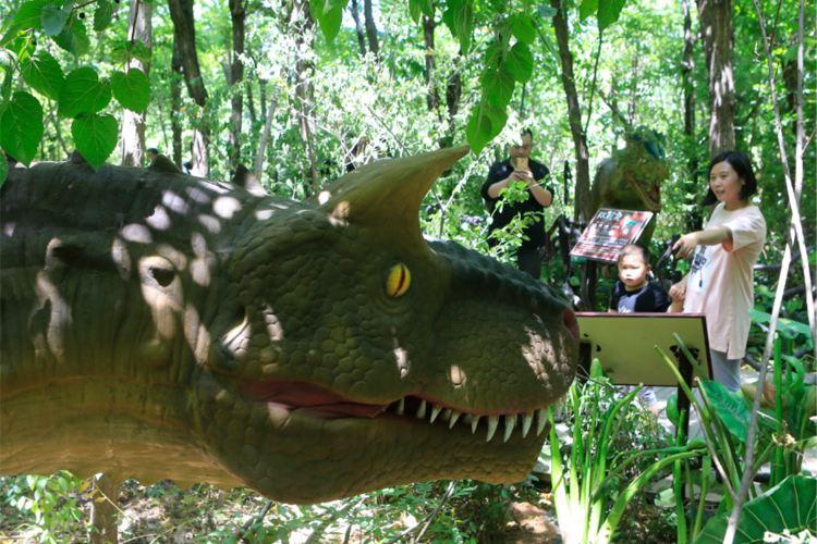 Jinan Wildlife World2