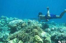 """旅游十条   能憋气13分钟的印尼鱼人讲述""""用进废退"""";世界上最棒的国籍排名,美国只是二十七"""