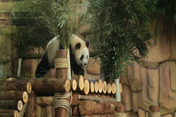 취안저우하이쓰 야생동물원2