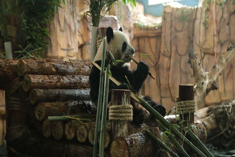 취안저우하이쓰 야생동물원3