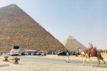 仰望已久的金字塔