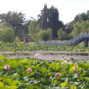 青格达湖旅游景点攻略图