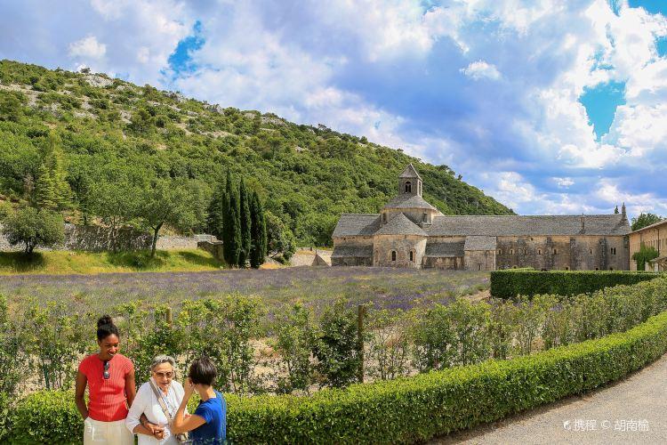 Abbaye Notre-Dame de Senanque2