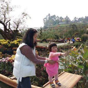 神蜜园玫瑰花溪谷旅游景点攻略图