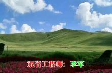 千松坝_丰宁坝上草原