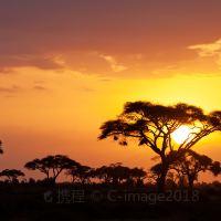 马赛马拉国家公园图片