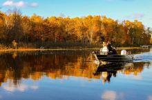 放过武康路的落叶,去五大湖喜提无添加秋天!