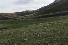 新疆阿勒泰喀纳斯旅游区景色