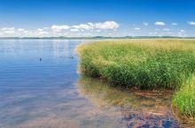 在诺尔盖花湖,邂逅一份浪漫