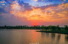 #向往的生活#看太湖日落