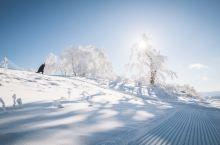 #元旦去哪玩#去旭川滑雪啊,不会滑的就拍照啊