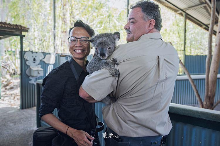 Billabong Koala and Wildlife Park4