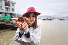 福鼎旅行 | 中国十大最美海岛