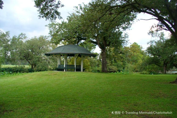 Audubon Park2