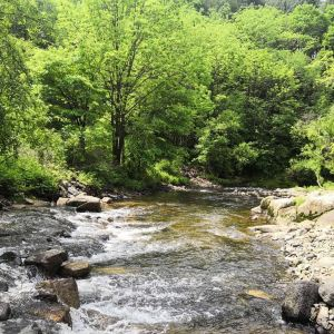 白石山国家森林公园旅游景点攻略图