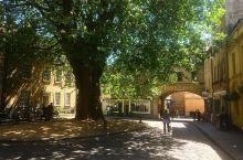 你永远都不会迷路的旅游景点:西方明灯巴斯修道院   地址: 12 Kingston Rd, Bath
