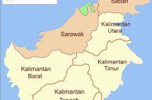 菜鸟的婆罗洲10日观鸟之旅