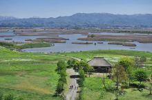 鸟儿们的天然游乐园——福島潟  这里是围绕泻湖的一个公园,类似国内的湿地公园,这里有上百种植物以及鸟