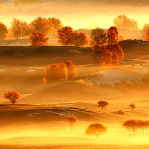 塞罕坝游记图文-金山岭、塞罕坝、乌兰布统、雾灵山,追逐这个秋季中国最美的秋色
