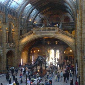自然历史博物馆旅游景点攻略图