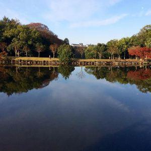 猿泽池旅游景点攻略图