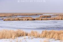 冬游博斯腾湖,维族库尔班大叔家的馕坑肉烤全羊等美食让人难忘