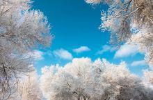 【新疆冬季旅行】美哉壮哉,难忘冰雪世界