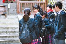 日本京都作为近几年最受中国游客欢迎的旅游城市,每一年来到日本京都的中国游客不计其数,游客之所以来到京