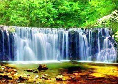 國家吊水壺森林公園
