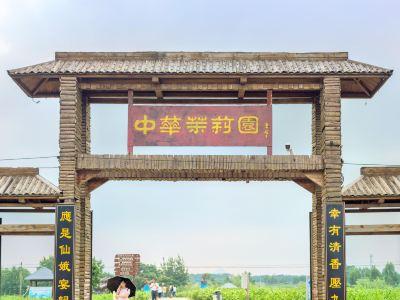 Chinese Jasmine Garden
