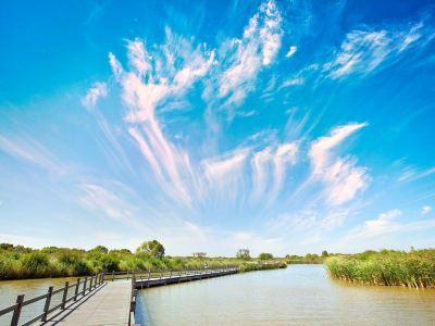 黃河口生態旅遊區