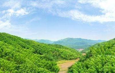 衢州大竹海森林公園
