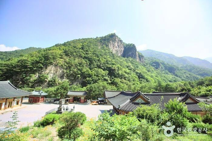 Samhwasa Temple travel guidebook –must visit attractions in Donghae-si –  Samhwasa Temple nearby recommendation – Trip.com