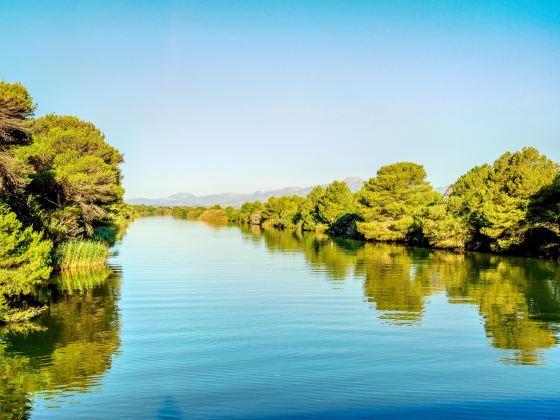 Albufera Natural Park