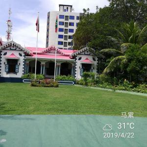 马尔代夫总统府旅游景点攻略图
