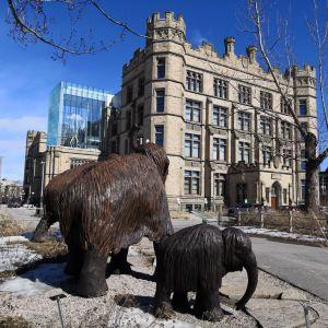 加拿大自然博物馆旅游景点攻略图