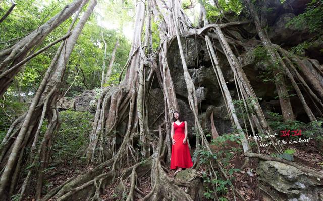 西双版纳|雨林心处,听懂你的语言