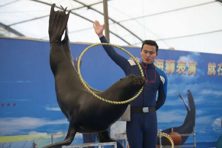 Fuguo Sea World2