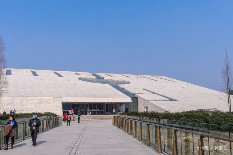 金沙遺跡博物館2