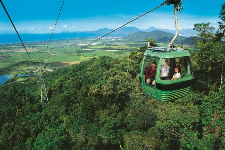 Skyrail熱帶雨林纜車3